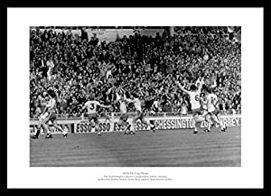 Southampton FC 1976 FA Cup Final Winning Goal Celebrations Framed Picture Memorabilia by Home of Legends
