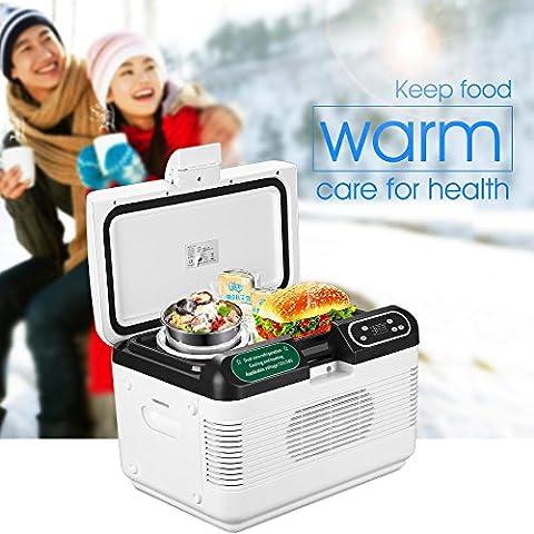 12L Mini tragbare Dual-Core-Kühlung Kühlschrank LKW Car Home Kühler Box Heater Reise-Kühlschrank