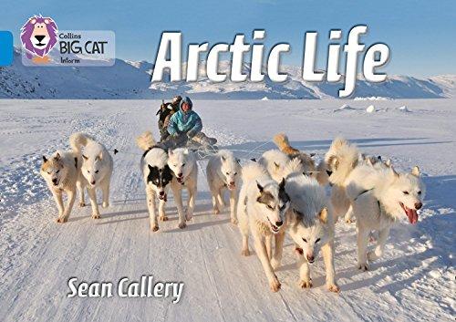 Arctic Life: Band 04/Blue (Collins Big Cat) - Big 0