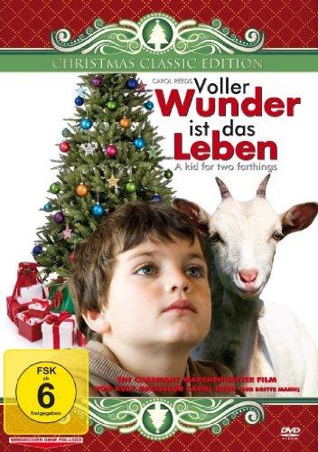 Voller Wunder ist das Leben_Eine Weihnachtsgeschichte