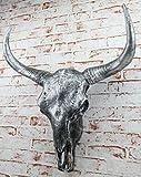 XXL Decorative Bull Skull Bull Head Skullpture 65 cm Bull Horn Silver
