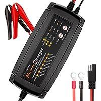 Cargador de Batería Inteligente Automático/Desulfator/Mantenedor,2/4/8 Amp Cargador de Batería Coche y Mantenimiento Automático de Batería para 12V de Coche ,Camión y Motocicleta por Dr. Auto