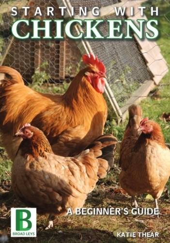 Starting with Chickens: A Beginner's Guide