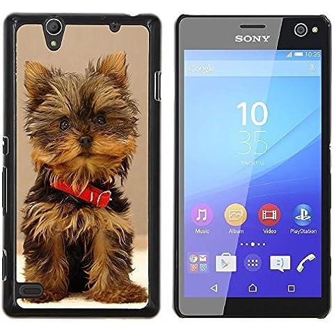 STAR ECELLPHONE CASE // Immagine fredda Duro PC Custodia telefono cellulare protettiva Cassa / Hard Case for Sony Xperia C4 - Carino Yorki Yorkie Terrier Dog -Cute Yorki Yorkie Terrier