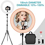 SAMTIAN 18 inch LED Ring Light Kit 3200K 5500K Dimmable 240 LED Ring lighting Kit YouTube Light Ring with 2M Light Stand, work with Smartphone and SLR Camera for Video Shooting, YouTube Video, Makeup
