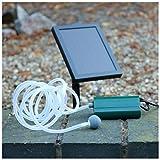 PK Green Solar Teichbelüfter Sauerstoffpumpe | 0,6 W 100 LPH Luftpumpe für Gartenteich | Pumpe für Garten, Teich | 1 Stein