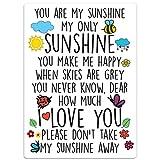 Dorothy Spring You Are My Sunshine My Only Sunshine, Targa Decorativa Colorata in Metallo, Dimensioni 27,9 x 20,3 cm