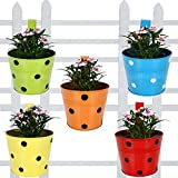 TrustBasket Set of 5 - Single Pot Railing Planter - Red,Yellow,Blue,Orange,Green