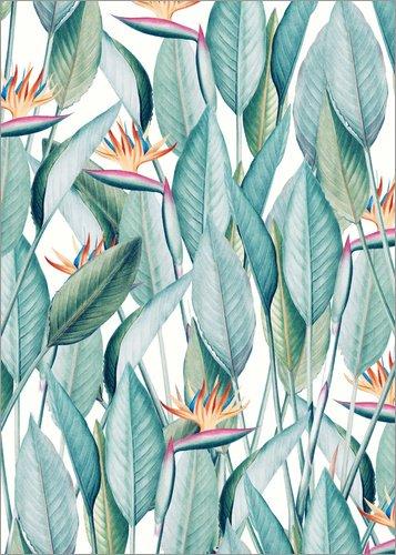 Posterlounge Forex-Platte 90 x 130 cm: Paradise Island von Uma 83 Oranges