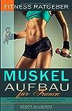 Fitness Ratgeber: Muskelaufbau für Frauen: Grundlagen für eine optimale Fettverbrennung und...