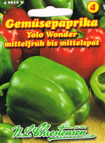 Paprika Yolo Wonder Gemüsepaprika