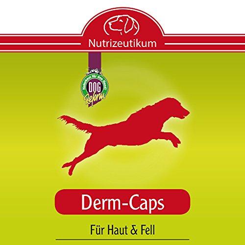 Nutrizeutikum Derm-Caps, 50g gegen zu trockener, schuppiger und juckender Haut sowie stumpfem, glanzlosem Fell bis hin zu Haarausfall für den Hund - 2