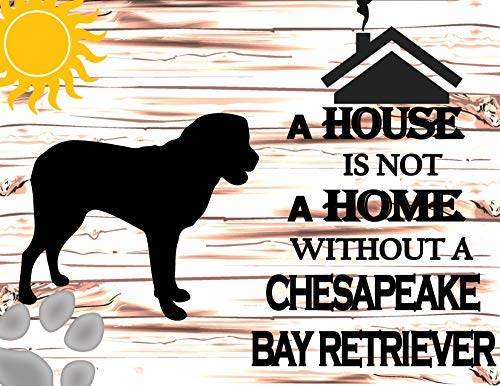 Chesapeake Metall (Vivityobert Schild A House is Not A Home Without A Chesapeake Bay Retriever, Aluminium, Metall-Warnschild, Heimdekorationsschild)