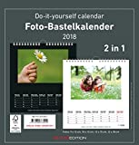 Foto-Bastelkalender 2018-2 in 1: schwarz und weiss - Bastelkalender: Do it yourself calendar (21 x 22) - datiert