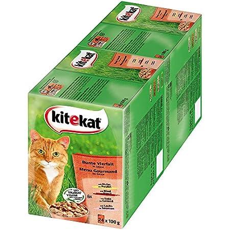 Kitekat Katzenfutter Nassfutter Bunte Vierfalt in Sauce, 48 Portionsbeutel (2 x 24 x 100g)