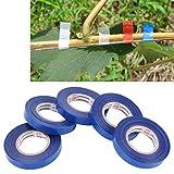 Lanbinxiang@ Giardino con nastro adesivo speciale nastro reggiatrice, Materiale: PVC, Dimensioni: 7,1 * 1,1 cm giardinaggio