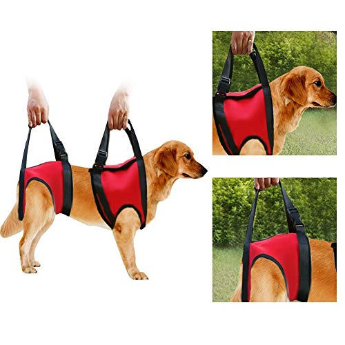 Filfeel Hunde Tragehilfe vorne Hund Unterstützung Harness Pet Gehhilfe Heben Ziehen Weste Sling Unterstützung Rehabilitation für Alte & Verletzte Hunde (Hind Leg - L-Red)