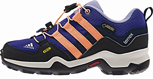 Adidas Terrex gtx k ngtfla/flaora/ngtsky Violett