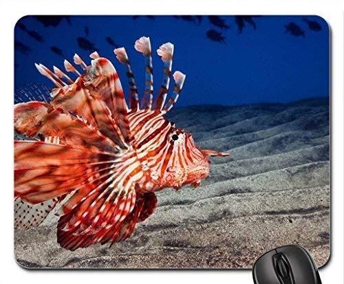 Natur-Landschaftsspiel-Mausunterlage, rote Ozean-Fisch-Mausunterlage, Mousepad (Fisch-Mausunterlage)