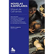 Novelas ejemplares (Austral Educación)