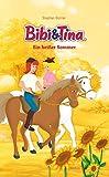 Bibi & Tina - Ein heißer Sommer: Roman