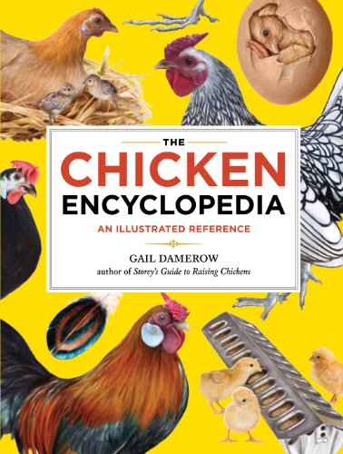 Chicken Encyclopedia: An Illustrated Reference