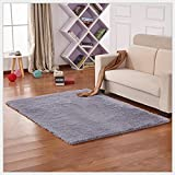 Yontree Anti-skid Living Room Soft Carpets Floor Mat Shaggy Area Rug (Silver Grey 100*160) …