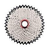 YTBLF Fahrradfreilauf, Fahrradteile - 10 Geschwindigkeit 11-42T Für Mountainbike MTB Fahrrad