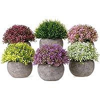 T4U Plantas Artificiales Plásticas Flor Decorativa en Maceta Lleno de Color Para Oficina en Casa Paquete de 6