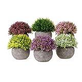 T4U Kunstpflanze Künstliche Topfpflanze Blumen Gras Bonsai mit Topf 6er-Set klein, Zuhause Wohnung Büro Dekor Hochzeit Geburtstag Weihnachten Geschenk
