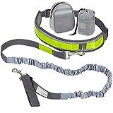 VITAZOO Jogging Hundeleine mit Bauchgurt in royalgrau, elastisch 1,2 m - 2,0 m, mit Reflektor-Streifen, ideal für mittelgroße und große Hunde | 2 Jahre Zufriedenheitsgarantie | Jogging-Leine, freihändig Joggen Spazieren gehen mit Hund