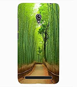 ColourCraft Beautiful scenery Design Back Case Cover for ASUS ZENFONE 6 A600CG