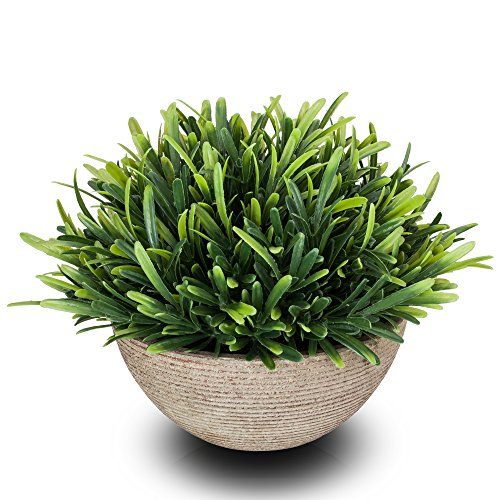 Ranken Akzente (chuangxindaye Kunstpflanze Mini Fake Topfpflanzen Dekorative lebensecht Blumen Grün Pflanzen (Topf, Rund, Grün))