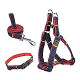 5ivepets Premium Hundegeschirr Set Inklusive Geschirr Halsband Leine - Verstellbares Nylon Softgeschirr im Klassischen Jeans Look - Perfekt Geeignet für Große, Mittlere und Kleine Hunde