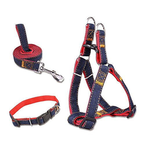5IVEPETS Premium dog harness kit with harness collar leash adjustable nylon harness in classic jeans look – ideal for large, medium and small dogs