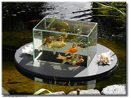 "Flying-Aquarium-Oval©""Basic"" 2500 grau Teichdeko Teichfische Teichbedarf Gartenteich Koi"