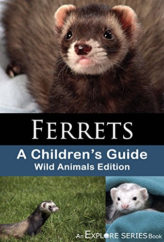 Ferrets: A Children's Guide (Explore Series Wild Animals Edition)