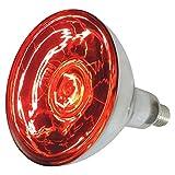 EIDER Infrarotlampe 150 - und 250 Watt auswählbar - Wärmelampe E27 - Top Qualität (150 Watt)