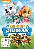 DVD Cover 'Paw Patrol - Ein neuer Fellfreund