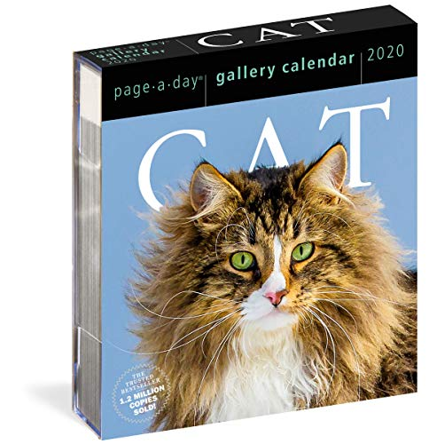 Workman Calendars: 2020 Cat Page-A-Day Gallery Calendar