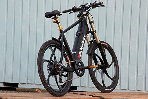 speed mountainbike elektro fahrrad 40 km h pedelec rad. Black Bedroom Furniture Sets. Home Design Ideas