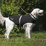 Corky 's Halsbänder see-me Dog Weste, xx-small, schwarz