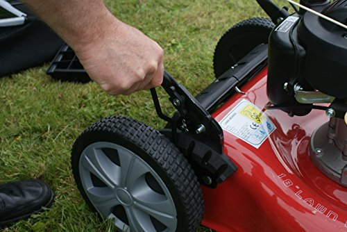Frisky Fox PLUS 20″ 5.5hp Self Propelled Petrol Lawn Mower 4 in 1 Mulching, Cutting, Collecting & Side Discharge Powered By 5.5HP 4-Stoke OHV Engine with Fitted Lawn Striper and 55L Grass Collection Bag
