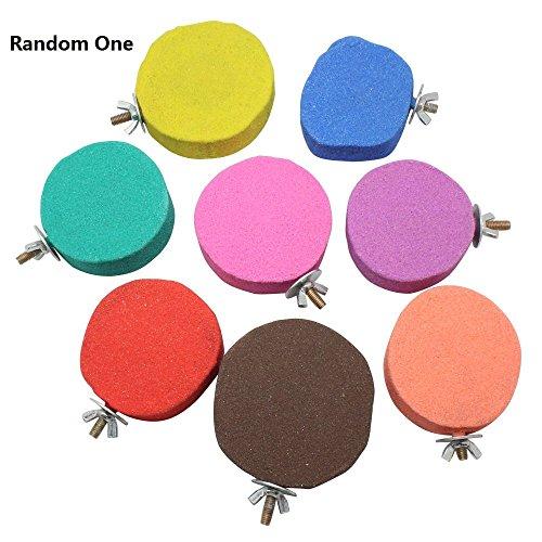Meetory Sitzstange aus Holz, Papageienständer, Board-Spielzeug für Chinchilla Eichhörnchen Vögel Käfigständer Durchmesser 6–8cm, zufällige Farbauswahl.