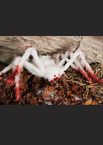 Ragno di Prop sanguinosa pelosi bianco grande Halloween - Hairy Spider Decoration