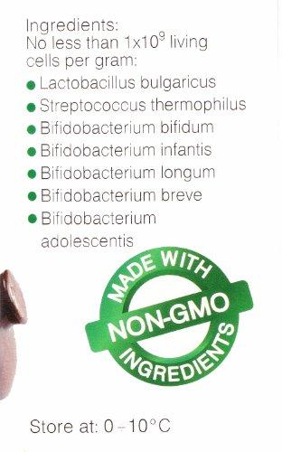 Joghurtferment für Bio-Joghurt – eine Packung mit 10 Beuteln tiefgekühlter trockener Kulturen - 4