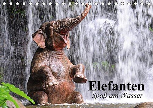 Elefanten. Spaß am Wasser (Tischkalender 2017 DIN A5 quer): Elefanten Babys beim...
