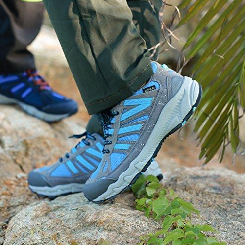 2017 Scarpe Da Ginnastica All'aperto Autunno Coppie Scarpe Scarpe Da Escursione A Bassa Quota Con Scarpe 38-44 Blue