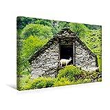Premium Textil-Leinwand 45 cm x 30 cm quer, Ziegen im Tal | Wandbild, Bild auf Keilrahmen, Fertigbild auf echter Leinwand, Leinwanddruck (CALVENDO Orte)