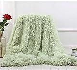 BYM Kuscheldecke Wohndecke Doppelseitig aus Warmem Weichem Plüsch Wolldecke Flauschige Felloptik Tagesdecke (Grün)